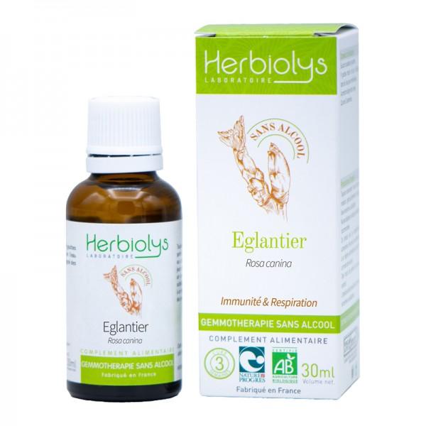 Eglantier bourgeons sans alcool en liquide bio par Herbiolys