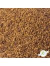 Alfalfa - Semences en vrac
