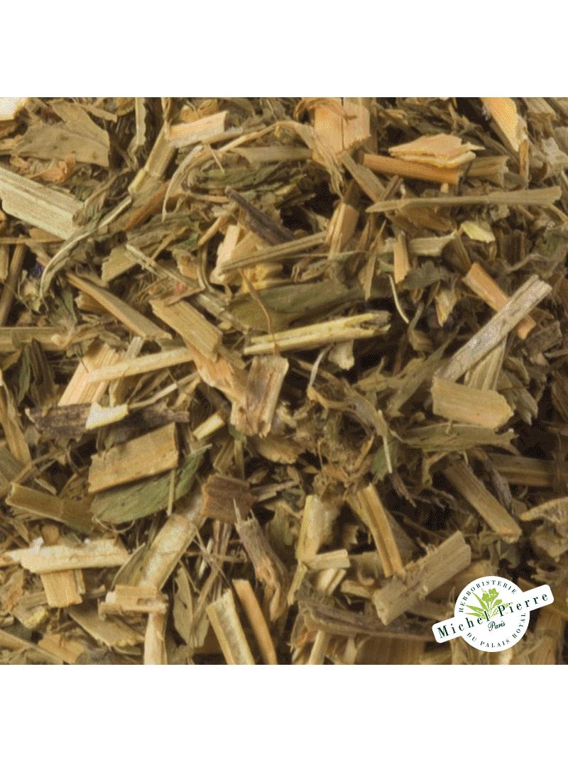 Alfalfa - feuilles en vrac detail
