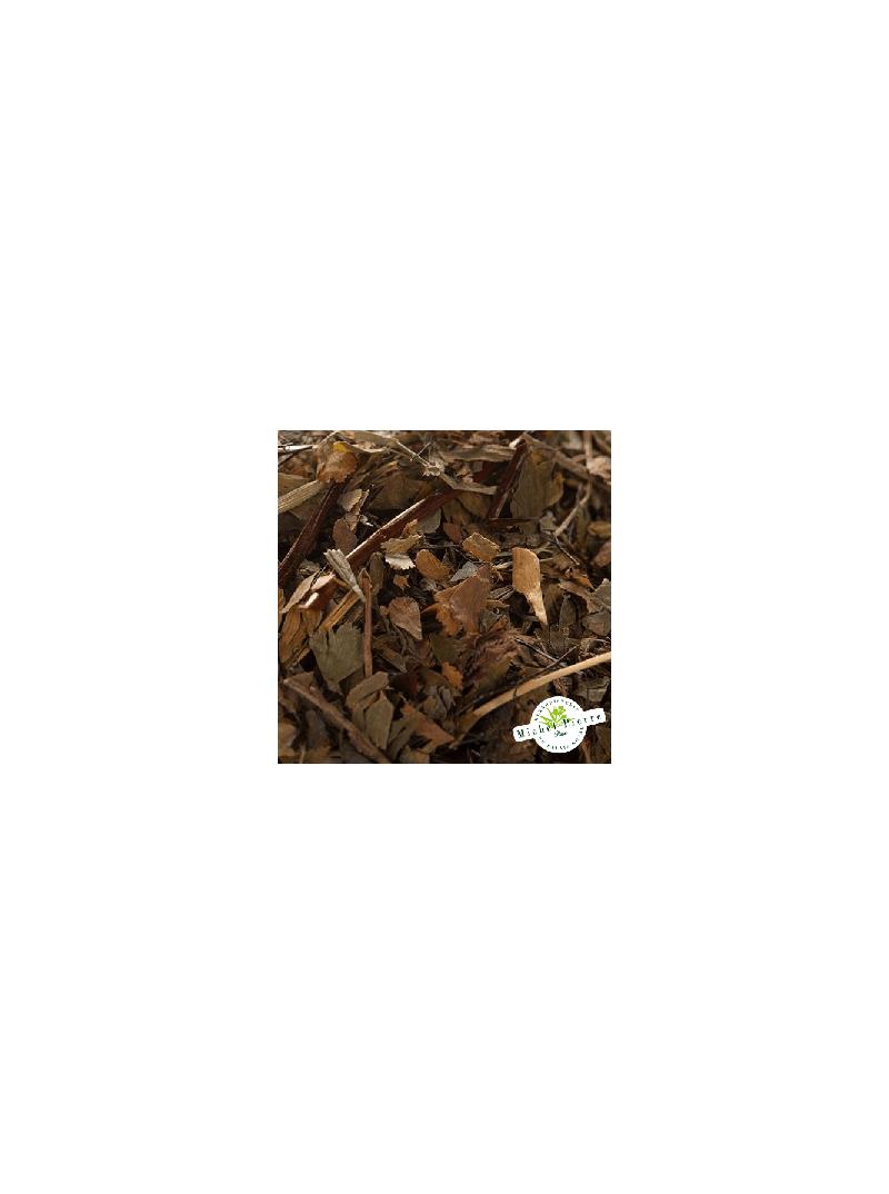 Capillaire vert - Fronde en vrac Herboristerie du Palais Royal Paris Michel Pierre