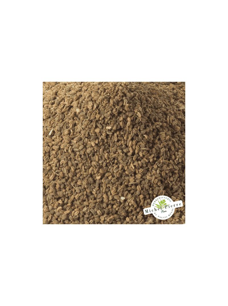Céleri - semences en vrac - Herboristerie du Palais Royal Paris - Michel Pierre