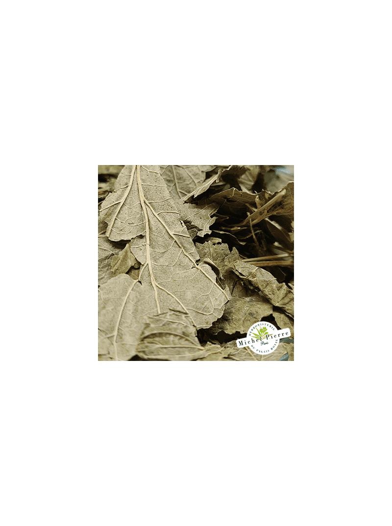 Cassis - Feuilles en vrac - HERBORISTERIE DU PALAIS ROYAL PARIS MICHEL PIERRE